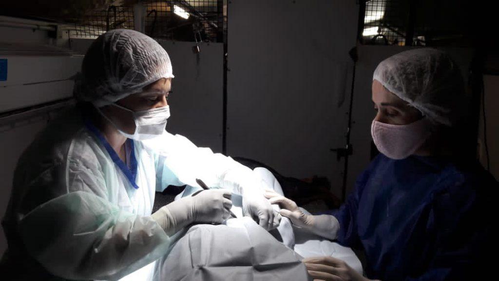 Veterinaria y Zoonosis